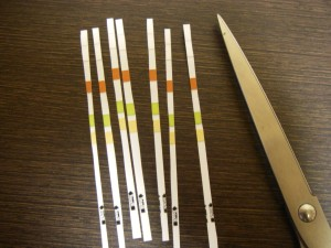 テトラ試験紙 節約術 1枚を2つに切断