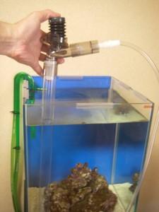 水作プロホースで水槽内の掃除と換水を同時に
