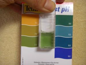 テトラテスト pHマリン(7.0-9.0)試薬で計測した水槽のPH