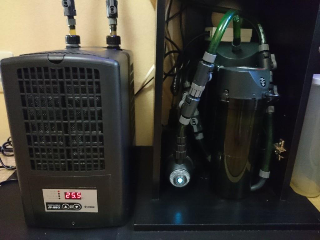 ゼンスイ ZC-100α (アルファ)を水槽に設置
