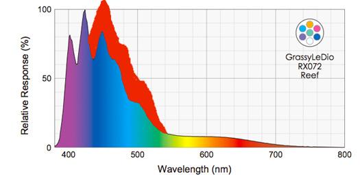 Grassy LeDio RX072 Reef spectrekai