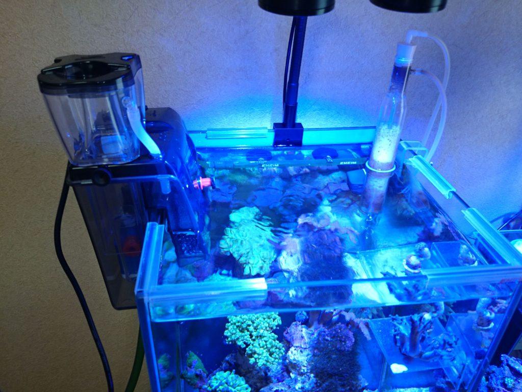 ゼンスイQQ1 30cmキューブ水槽に設置